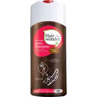 Hairwonder - Hair Repair Gloss Shampoo - Brown Hair